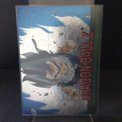 Dragon Ball Z Chromium #13