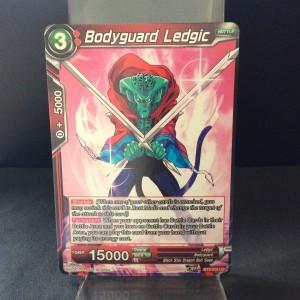 Bodyguard Ledgic