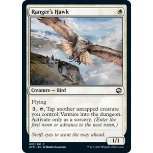 Ranger's Hawk