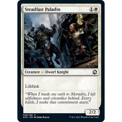 Steadfast Paladin