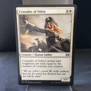 Crusader of Odric