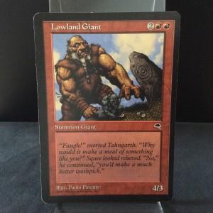 Lowland Giant