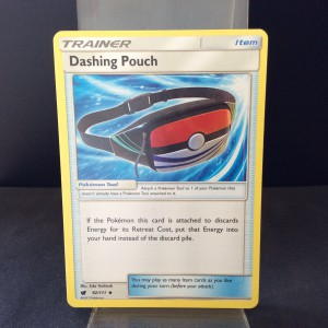 Dashing Pouch