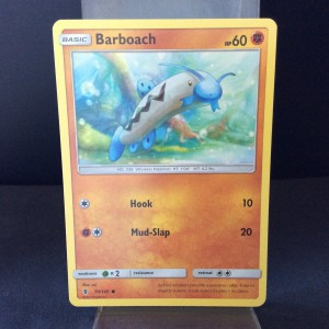 Barboach