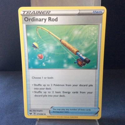 Ordinary Rod