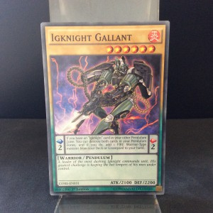 Igknight Gallant