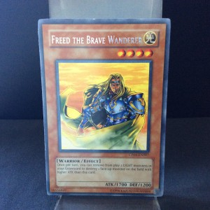 Freed the Brave Wanderer