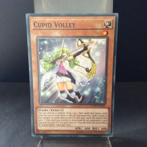 Cupid Volley