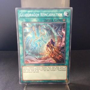 Guardragon Reincarnation