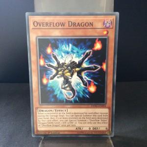 Overflow Dragon
