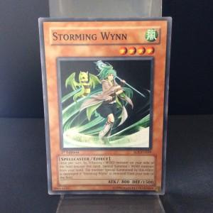Storming Wynn