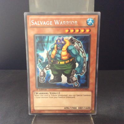 Salvage Warrior