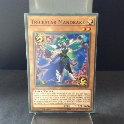 Trickstar Mandrake