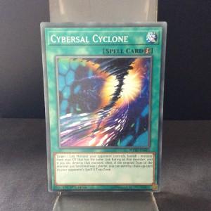 Cybersal Cyclone