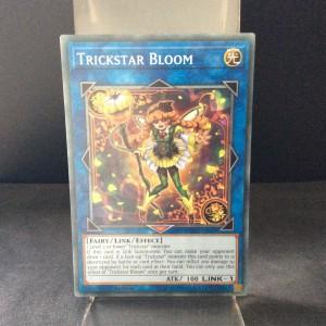 Trickstar Bloom