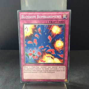 Blossom Bombardment