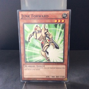 Junk Forward