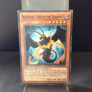 Blackwing - Brisote the Tailwind