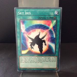 Sky Iris
