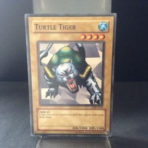 Turtle Tiger