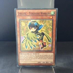 Lyrilusc - Turquoise Warbler