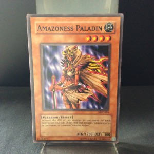 Amazoness Paladin