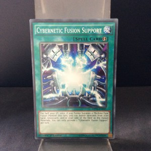 Cybernetic Fusion Support