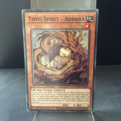Tenyi Spirit - Adhara