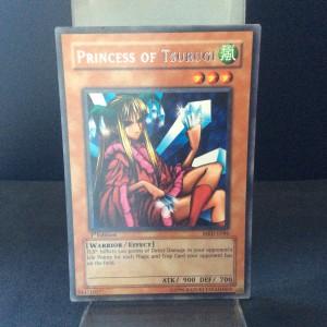Princess of Tsurugi