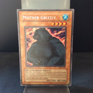 Mother Grizzly