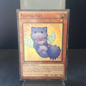 Fluffal Cat