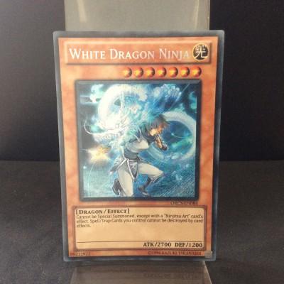 White Dragon Ninja
