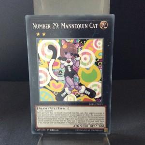 Number 29: Mannequin Cat