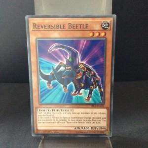 Reversible Beetle