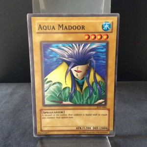 Aqua Madoor