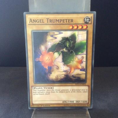 Angel Trumpeter