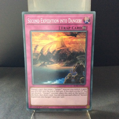 Second Expedition Into Danger!