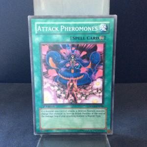 Attack Pheromones