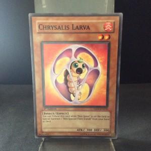 Chrysalis Larva