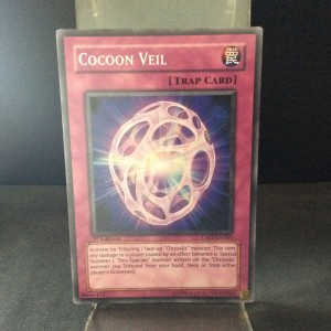 Cocoon Veil