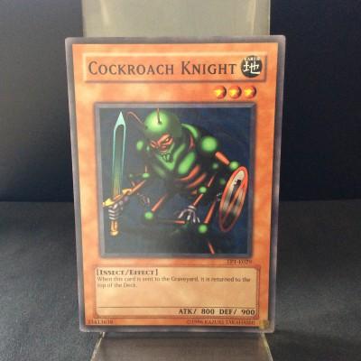 Cockroach Knight
